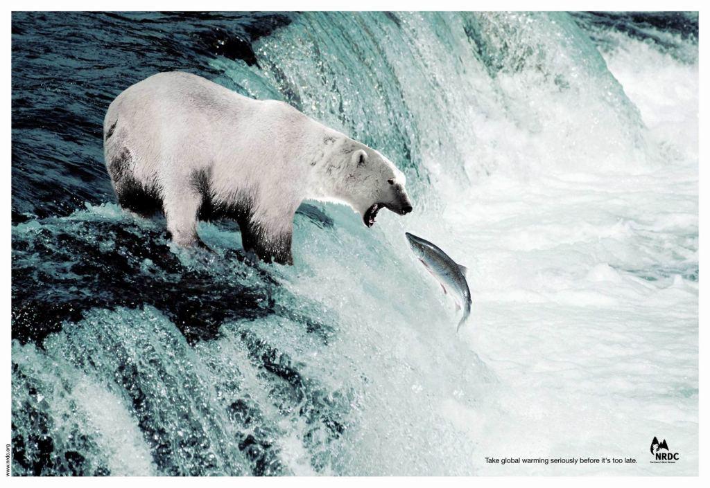 Grande Dick orsi